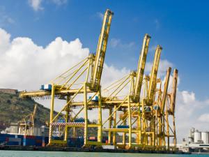 Cargo Cranes in Industrial Port